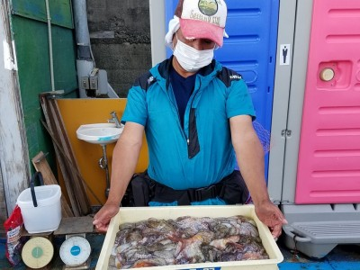 <p>堺市の北川様、沖の一文字北で、タコ 500gまで36匹・リリース 12匹(総重量 10.255㎏)</p> <p>テンヤ 餌カニ</p>