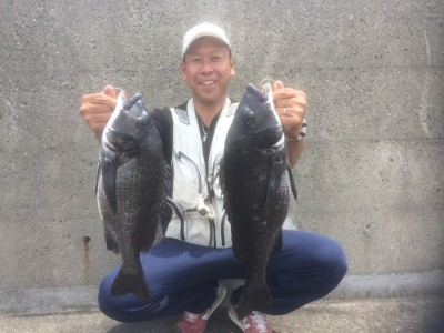 <p>和泉市の松原様、沖の一文字白灯で、チヌ 50~53まで2匹</p> <p>落とし込み 餌イガイ</p>