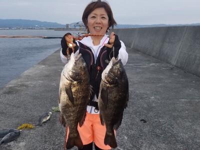 <p>和泉市の松原奥様、沖の一文字北で、チヌ 49.5cmまで2匹</p> <p>落とし込み 餌イガイ</p>