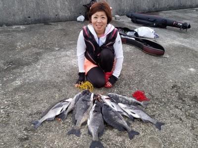 <p>和泉市の松原美喜様、沖の一文字白灯で、チヌ 49.6cmまで10匹</p> <p>落とし込み 餌イガイ</p>