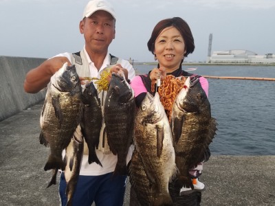 <p>和泉市の松原夫婦様、沖の一文字白灯で、チヌ 46.5cmまで11匹</p> <p>落とし込み 餌イガイ</p>