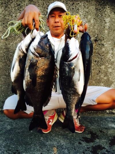 <p>和泉市の松原様、沖の一文字白灯で、チヌ 49cmまで4匹</p> <p>落とし込み 餌イガイ</p>