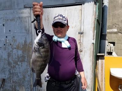<p>大阪市の早田様、旧の一文字白灯で、チヌ 40.5cmまで2匹</p> <p>紀州釣り 餌オキアミ</p>