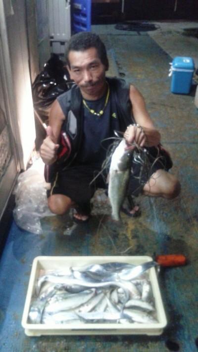 <p>茨木市の島野様、旧の一文字赤灯で、アジ 24cmまで13匹・ツバス 30cm 1匹・ハネ 43cm 1匹・太刀魚 指3本まで7匹</p> <p>アジ・ツバス・ハネ(ウキ釣り・シラサエビ)太刀魚(ウキ釣り・キビナゴ)</p>
