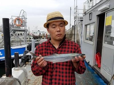 <p>大阪市の小林様、沖の一文字北で、サゴシ 49cm 1匹</p> <p>ルアー(メタルバイブ)</p>