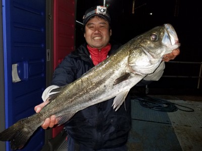 <p>東大阪市のまさやん、旧の一文字赤灯で、スズキ 77.5cm 1匹</p> <p>ズボ釣り 餌キビナゴ</p>