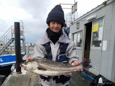 <p>堺市の川崎様、旧の一文字赤灯で、スズキ 66cm 1匹・ツバス 48cm 1匹</p> <p>のませ釣り 餌アジ</p>