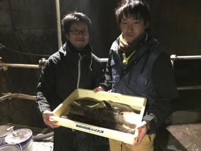 <p>堺市の鈴木様・志藤様、沖の一文字北で、カレイ 34cmまで7匹</p> <p>投げ釣り 餌青イソメ</p>