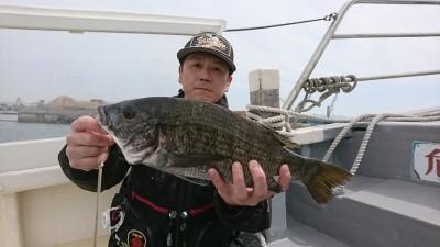 <p>濱本様 フカセ釣り チヌ43cm</p> <p>午前10時頃の釣果です。アタリは3回程ありましたが、食いは少し浅いようです。</p> <p>4月からスタートしたハネ・チヌダービー、初エントリーです。ありがとうございます。</p>