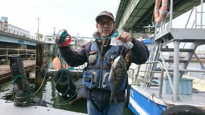 <p>前田様 沖の南 エビ撒き釣り チヌ36.5cm メバル20cm タナは3ヒロ</p> <p>ちょっときびしいとのお話でしたがしっかり魚ゲットしてるあたり流石です。</p>
