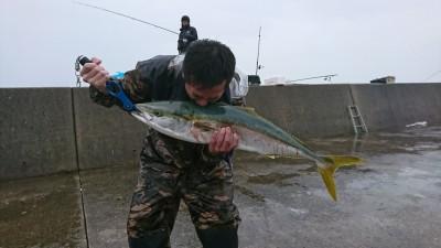 <p>大北様 沖の北 のませ釣り/活アジ ブリ90cm 5時の1番船で渡って、1投目で釣れたそうです♪</p>