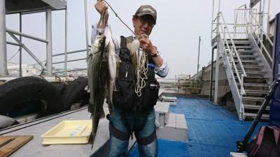<p>岩田様 沖の北 エビ撒き釣り ~58.0cm 3匹 釣果情報ありがとうございます♪</p>