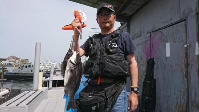 <p>左海様 沖の北 エビ撒き釣り ~39.5cm 2匹 釣果情報ありがとうござます!ちょっと濁ってますが雨の影響は心配なさそうです。別の</p> <p>のお客様ですが50cmくらいのハネも釣れていまたよ♪</p>