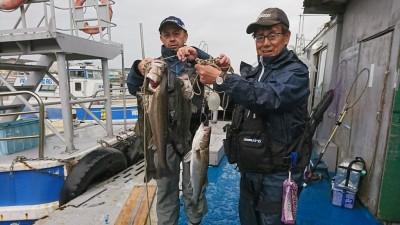 <p>沖の北 エビ撒き釣り 福山様 ハネ~73.0cm 3匹 岩田様 ハネ 47.5cm 釣れたタナは4.5ヒロとの事。昨日はちょっと喰いが渋かったようですがまたいい感じになってきましたね♪</p>