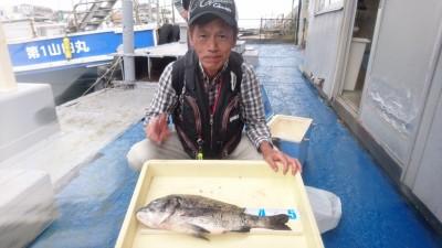 <p>坂口様 沖の北 フカセ釣り チヌ49cmGET!</p> <p>青物不発に終わった本日ですが、チヌはしっかり釣れていました!しかも良型♪おめでとうございます(^^♪</p>