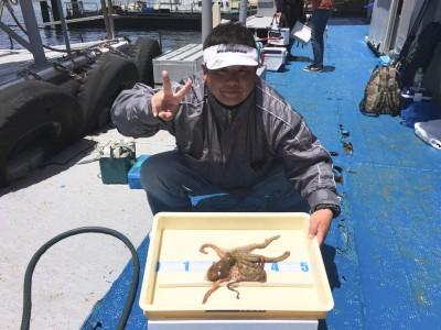 <p>田島様 旧一文字 マダコ 1匹!!!</p> <p>今シーズン初のマダコの釣果が出ました♪ 釣果写真へのご協力、ありがとうございます。</p>
