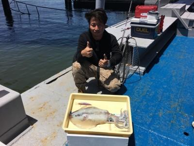 <p>藤井様 沖の北 ショアキャスティング アオリイカ胴長35cm 1.75kgを1杯!!!</p> <p>驚きの獲物がGETされました。ミノーの表層早引きで何とアオリイカが釣れましたよ♪ アオリイカを狙っての釣果では無かったとの事ですが、思わぬ獲物に波止上はたいへん盛り上がったそうです。美味しいアオリイカを堪能できますね♪ 釣果写真へのご協力、ありがとうございます!</p> <p>&nbsp;</p>