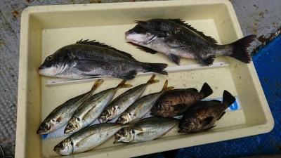 <p>沖の北 エビ撒き釣り チヌ・良型メバル・中アジ 姿を消していた中アジが復活!昨日の四季の釣り撮影の時に回遊してくればよかったのに…。</p>