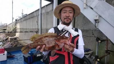 <p>朝にサゴシを釣られた鹿浦様、今度はアコウ42.2cmをゲット!!!しかもアジングタックルで釣りあげたそうです。お見事でです!</p>
