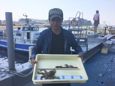 <p>松永様 旧一文字 タコジグ タコ3杯</p> <p>カーブ付近の釣果です。釣果写真にご協力頂き、ありがとうございます。</p>