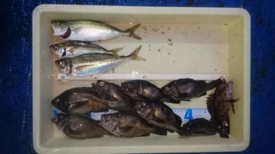 <p>津田様 沖の北 エビ撒き釣り メバル・アジ♪</p> <p>18:30頃から時合あったとの事です。アジもシラサで釣られたそうです!おめでとうございます!(^^)!</p>