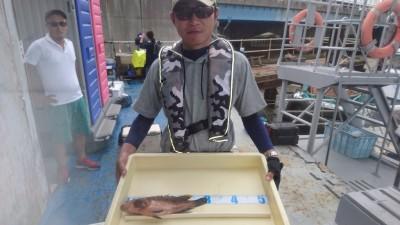 <p>深川様 沖の北 鉄板バイブ アコウ30cmGET!</p> <p>高級魚のアコウです!おめでとうございます(^^♪</p>