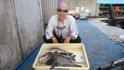 <p>西田様 沖の北 落とし込み チヌ~43cmまで3尾GET</p> <p>いつも安定して釣果を出されております(^^♪流石です!</p>