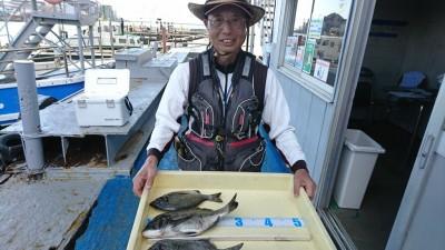 <p>7/31の釣果です。旧一文字赤灯 フカセ釣りでチヌ イガイが落ちてから、フカセと紀州釣りの釣果が上向きですね。</p>