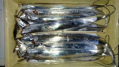 <p>中島様 沖の南 ワインド タチウオ多数GET</p> <p>魚の処理がお見事でした(^^♪おめでとうございます</p>