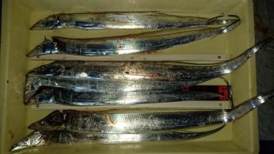 <p>高倉様 沖の北 どじょうテンヤ タチウオ多数GET</p> <p>今日は風で釣りにくかったですね(-_-;)おめでとうございます</p>