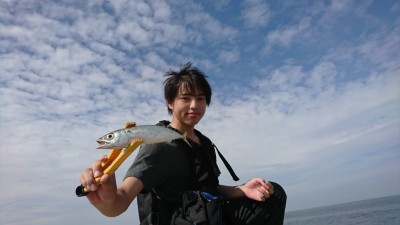 <p>リアルタイム!沖の北 サビキ釣りで中サバ、小アジが釣れていました。</p>