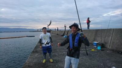 <p>沖の北 サビキ釣りで小アジが釣れていました。飲ませの餌にするにはちょうどいいサイズです。</p>