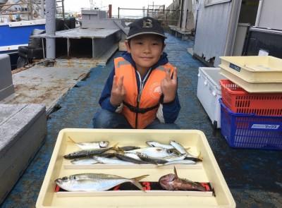<p>ゆうき君 沖の北 サビキ釣り・胴突き 大アジ31cm・小アジ・中サバ・ガシラ</p> <p>いいサイズのアジが釣れましたよ♪ また遊びに来てくださいね。</p>