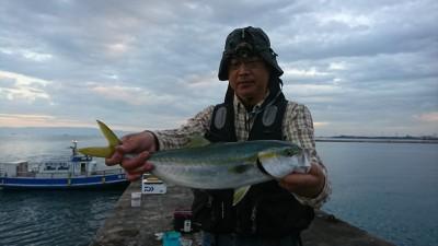 <p>沖の北 のませ釣りでハマチ!6時頃にヒット!</p>