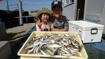<p>福井ファミリー様 沖の北 サビキで小アジとマイワシ大漁♪ ドジョウの引き釣りでタチウオもゲット。</p>