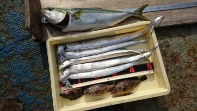 <p>山根様 沖の北 のませ釣りでメジロ65㎝! ウキ釣りで棚は4ヒロと深め。7時頃に釣れたそうです。タチウオはドジョウの引き釣りで。タチウオシーズン終盤ですがまだ釣れてますよ♪</p>