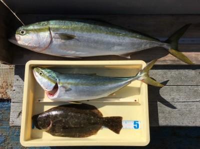 <p>山出様 沖の北 のませ釣り ブリ93.5cm!・メジロ65.0cm・ヒラメ43.5cm</p> <p>昨日に引き続きブリを釣られております。90cmオーバーなので、11月開催中の大物賞(無料乗船券)Get! 他にもメジロ・ヒラメも釣られておりますよ。いつも釣果情報提供にご協力頂き、ありがとうございます。</p>