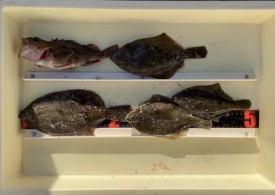 <p>伊藤様 沖の北 投げ釣り/青イソメ 24.0cmまでを4枚・ガシラ</p> <p>カレイも含め良型のガシラも釣られております。カレイ釣果でスタンプ1個進呈です。</p>