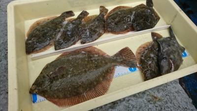 <p>竹島様 沖の北 カレイ7匹とウマヅラハギ1匹!やはりカーブ付近がよく釣れているんですが、他の場所でも丁寧に探れば釣果出ますよ♪</p>