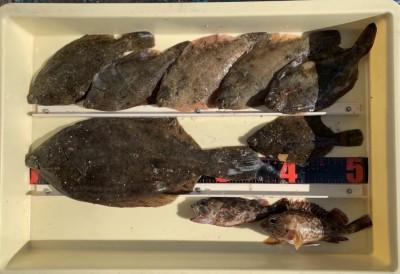 <p>川崎様 沖の北 投げ釣り カレイ35.5cmまでを7枚・ガシラ</p> <p>良型のカレイが上がりましたよ。カーブ付近での釣果です。カレイ釣果でスタンプ1個進呈です♪</p>