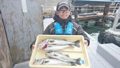 <p>青山様 沖の北 エビ撒き ハネ多数GET</p> <p>セイゴクラスも混ざり始めましたね(^^♪これからの数釣りに期待できそうです!おめでとうございます</p>