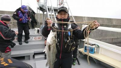 <p>徳山様 沖の北 エビ撒き釣りでハネ59㎝!ハネ・チヌ・根魚が同じ仕掛けで狙えるので今はエビ撒きがおすすめですよ♪</p>