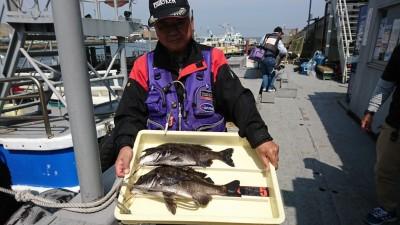 <p>今中会長様 旧一文字白灯 エビ撒き釣りでチヌ42.5㎝!今日は前田さんのスズキをナイスタモ入れでしたね♪また昨年みたいなドラマ魚待ってますよ~。</p>