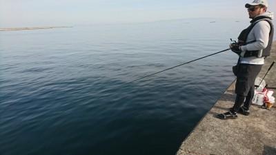 <p>旧一文字リアルタイム(7:30) カーブ付近 ふかせ釣りでチヌ釣れていました。現在4枚!</p>
