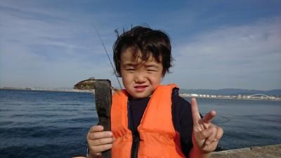 <p>沖の北リアルタイム(16:20) オイルフェンス付近 サビキ釣りで豆アジが釣れていました!足元に沢山見えていましたよ♪極小サビキで狙えば沢山釣れそうでした。15時に渡った方はすでに中アジをポツポツと。午前中調子がいいと夕方も釣れだしが早いですね。</p>