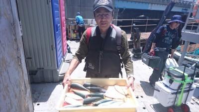 <p>吉本様 沖の北 サビキ アジ/サバ/マイワシGET</p> <p>朝も釣れてますが、夕方の方が安定しているようですねーおめでとうございます</p>