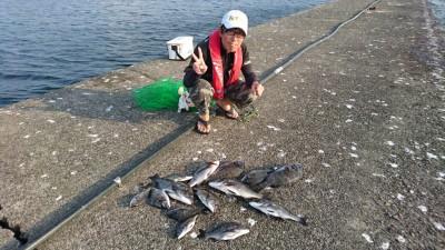 <p>高野様 中波止 紀州釣り チヌ~43cmまで14尾GET</p> <p>流石の釣果ですね!おめでとうございます(^O^)</p>