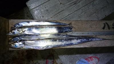 <p>匿名名人様 沖の北 テンヤ 良型タチウオGET</p> <p>今日の竿頭ですね!これからドンドンタチウオ釣れるでしょう!おめでとうございます(^O^)</p>