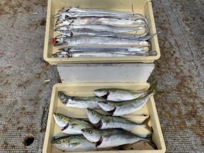 <p>田中様 太刀魚・ツバス・サゴシ 全てメタルジグでの釣果になります♪太刀魚はなんと14本‼︎♪♪ツバスの時合の後に完全に陽が出てから7時前後に釣れたとの事です(^ ^)これだけ釣れてくれたら大満足ですね♪おめでとうございます(^o^)</p>