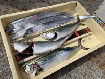 <p>匿名様 沖の北 太刀魚・ツバス・サゴシ 全てメタルジグでの釣果です♪ツバスも太刀魚もサゴシも全てメタルジグで狙えますし、朝の時合もほぼ変わらないので朝まずめだけなどの短時間釣行も出来そうですね!おめでとうございます(^o^)</p>
